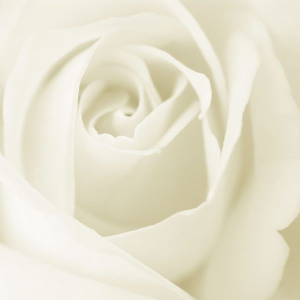 jilbab-warna-putih