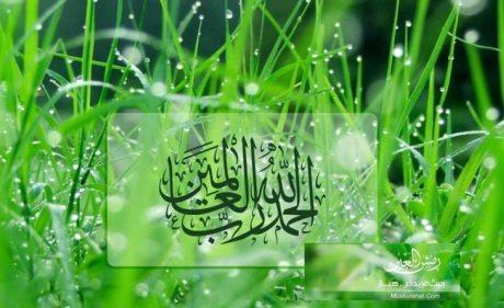donasi perjuangan dakwah islam